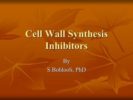 Cell Wall Synthesis Inhibitors By S.Bohlooli, PhD.