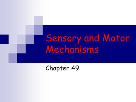 Sensory and Motor Mechanisms Chapter 49. Sensing and Acting Bats use sonar to detect their prey Moths  can detect the bat's sonar and attempt to flee.