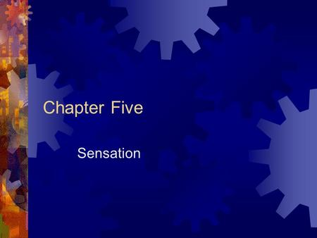"Chapter Five Sensation. The Basics  Sensation  The mechanical process by which we ""take in"" physical information from the outside world  Psychophysics."