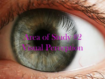 Area of Study #2 Visual Perception