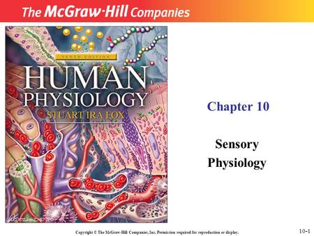 Copyright © The McGraw-Hill Companies, Inc. Permission required for reproduction or display. Chapter 10 Sensory Physiology 10-1.