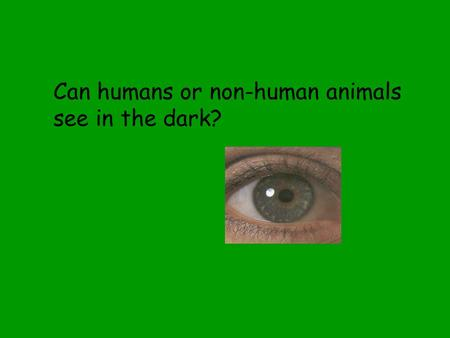 Can humans or non-human animals see in the dark?.