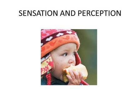 SENSATION AND PERCEPTION. Sensation—the process of detecting a physical stimulus Perception—the process of integrating, organizing and interpreting sensations.