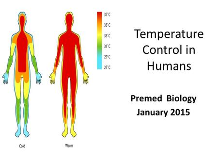 Temperature Control in Humans Premed Biology January 2015.