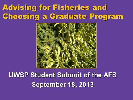Advising for Fisheries and Choosing a Graduate Program UWSP Student Subunit of the AFS September 18, 2013.