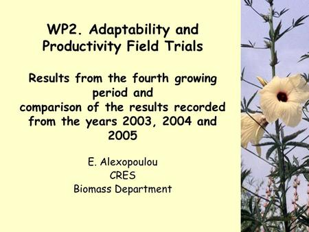 WP2. Adaptability and Productivity Field Trials Results from the fourth growing period and comparison of the results recorded from the years 2003, 2004.