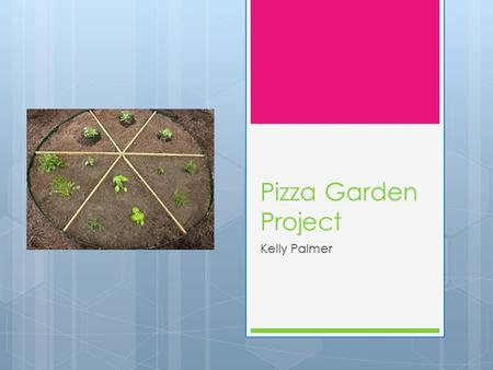 Pizza Garden Project Kelly Palmer. What is a pizza garden?  A large circular garden  Sectioned off to hold different plants  The plants are ingredients.