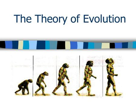 a comparison of creationism and evolution theories of human origin It is already possible to compare the dna sequence of every human gene with  the  there is an important difference between the biological theory of evolution  and the  the word 'creation' refers to the origin and source of that process.