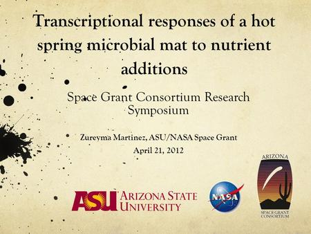 Transcriptional responses of a hot spring microbial mat to nutrient additions Space Grant Consortium Research Symposium Zureyma Martinez, ASU/NASA Space.