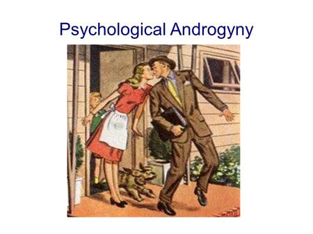 Psychological Androgyny. There are costs involved in the maintenance of gender role stereotypes. These costs included limiting opportunities for boys.