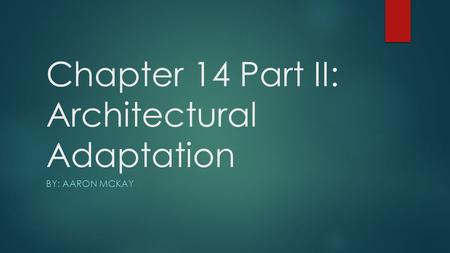 Chapter 14 Part II: Architectural Adaptation BY: AARON MCKAY.