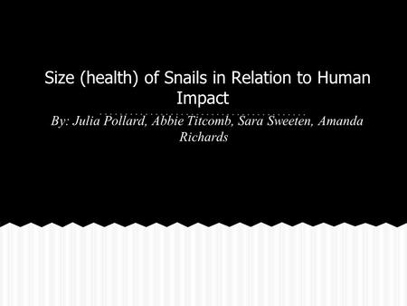 Size (health) of Snails in Relation to Human Impact By: Julia Pollard, Abbie Titcomb, Sara Sweeten, Amanda Richards.