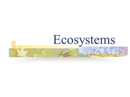 Ecosystems. Composition of an Ecosystem An ecosystem (short for ecological system) is an ecological community together with its environment, functioning.