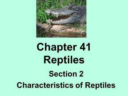 Section 2 Characteristics of Reptiles