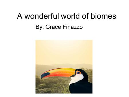 A wonderful world of biomes By: Grace Finazzo. Rainforest Biome rainforest climate is very humid, the rainforest gets an average of 3 meters of rain a.