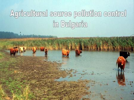 Main agricultural pollution sources in Bulgaria storage of manure storage of fertilizers and plant protection materials use of fertilizers and plant protection.
