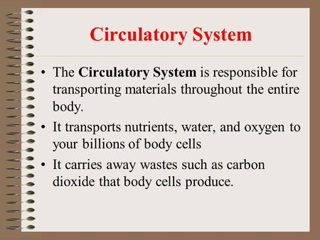 Circulatory System The Circulatory System is responsible for transporting materials throughout the entire body. It transports nutrients, water, and oxygen.
