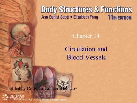 © 2009 Delmar, Cengage Learning Chapter 14 Circulation and Blood Vessels Edited by Dr. Ryan Lambert-Bellacov.