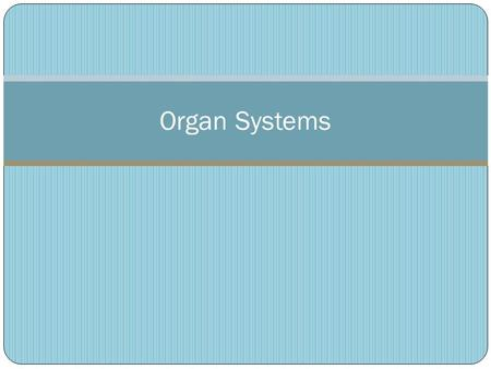 Organ Systems. Organ Systems Overview Includes skin, hair and nails Creates waterproof barrier aro8und the body Works with bones to move parts of the.
