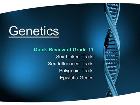 Genetics Quick Review of Grade 11 Sex Linked Traits Sex Influenced Traits Polygenic Traits Epistatic Genes.