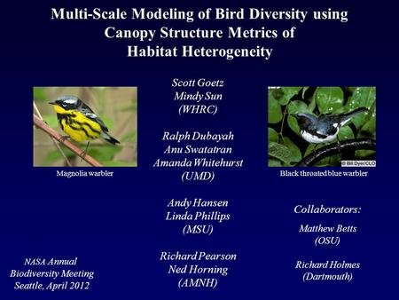 Multi-Scale Modeling of Bird Diversity using Canopy Structure Metrics of Habitat Heterogeneity Scott Goetz Mindy Sun (WHRC) Ralph Dubayah Anu Swatatran.