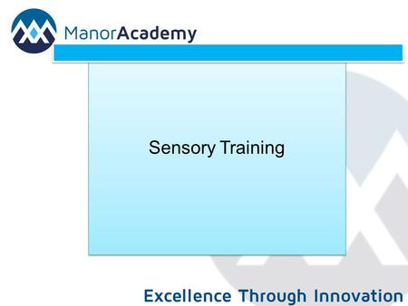 Sensory Training. Sensory Processing: Sensory Processing difficulties occurs when sensory information coming in from the senses is not interpreted efficiently.