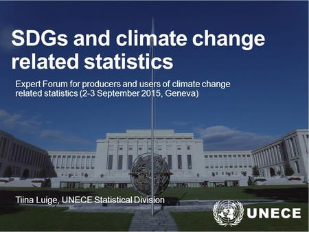 SDGs and climate change related statistics