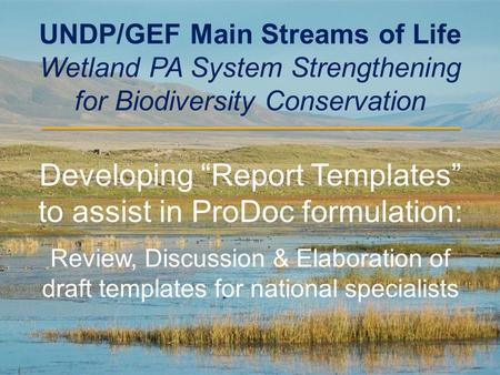 "UNDP/GEF Main Streams of Life Wetland PA System Strengthening for Biodiversity Conservation Developing ""Report Templates"" to assist in ProDoc formulation:"