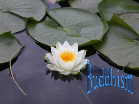 Introduction Hello class, today we will enlighten you with our wonderful religion. Buddhism!