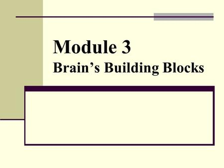 Module 3 Brain's Building Blocks. The Human Brain 1350 gram > 3 pounds 1 trillion cells 2 types of brain cells Glial cells (900 billion) Neurons (100.