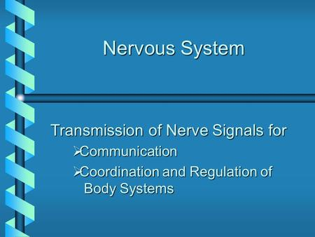 Nervous System Transmission of Nerve Signals for  Communication  Coordination and Regulation of Body Systems.