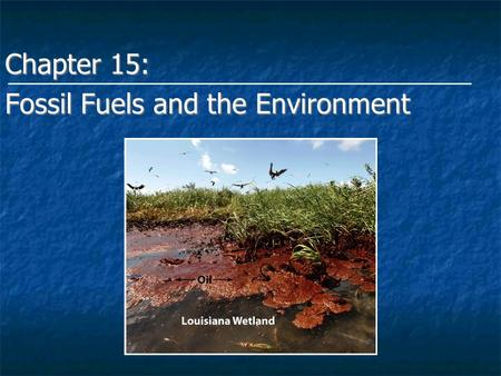 energy and the environment fossil fuels essay  · fossil fuels vs renewable energy non-renewable sources of energy such as coal and fossil fuels are a real threat to environment (im doing an essay.