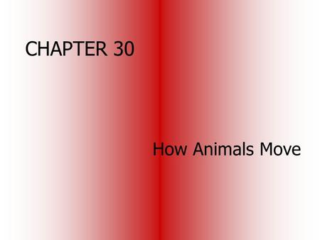 CHAPTER 30 How Animals Move. Locomotion water: provides support against gravity but allows for a high frictional resistance air: provides little support.