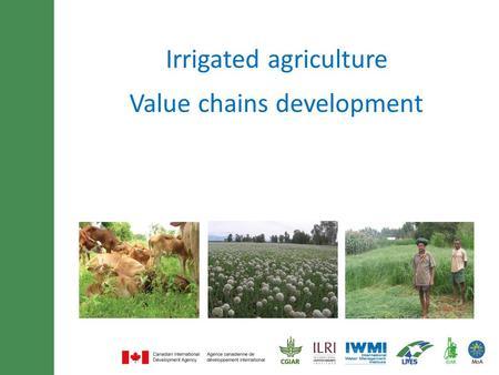Minimum of 30 font size and maximum of 3 lines title Irrigated agriculture Value chains development.