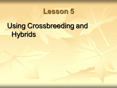 Lesson 5 Using Crossbreeding and Hybrids. Next Generation Science/Common Core Standards Addressed! HS ‐ LS1 ‐ 1. Construct an explanation based on evidence.