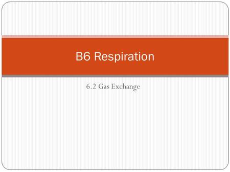6.2 Gas Exchange B6 Respiration. Identify and label the parts of the respiratory system.