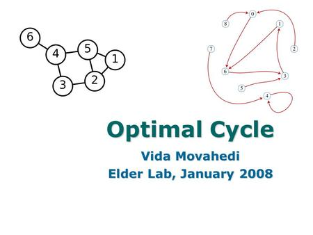 1 Optimal Cycle Vida Movahedi Elder Lab, January 2008.
