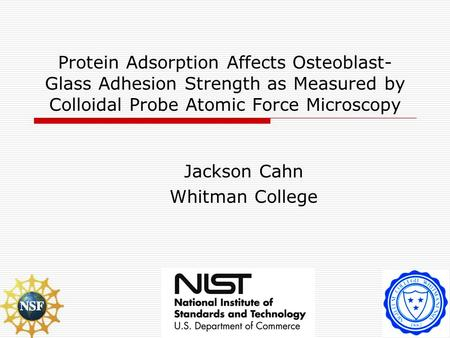 Protein Adsorption Affects Osteoblast- Glass Adhesion Strength as Measured by Colloidal Probe Atomic Force Microscopy Jackson Cahn Whitman College.