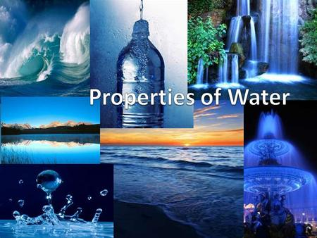 Water- it's everywhere! Water is the key to our survival on Earth, it is our source of life Water is everywhere! It makes up about 70% percent of the.
