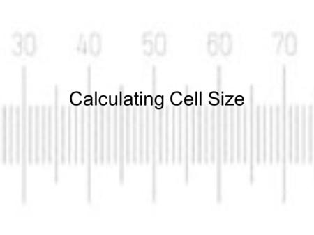 Calculating Cell Size. Key Terms Resolution: the ability to distinguish two separate points as distinct from each other Magnification: the number of times.