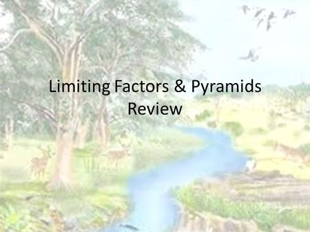 Limiting Factors & Pyramids Review. Limiting Factors: A limiting factor is anything that keeps a population from growing larger. FOOD WATER LIVING SPACE.
