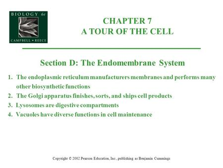 CHAPTER 7 A TOUR OF THE CELL Copyright © 2002 Pearson Education, Inc., publishing as Benjamin Cummings Section D: The Endomembrane System 1.The endoplasmic.