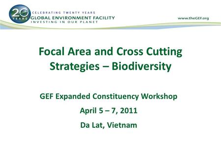 Focal Area and Cross Cutting Strategies – Biodiversity GEF Expanded Constituency Workshop April 5 – 7, 2011 Da Lat, Vietnam.