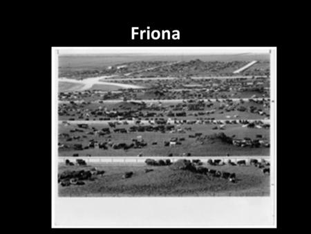 Friona. Central Problem Would consumers, when given the opportunity to buy a better product at a competitive price, remain loyal to a brand and ultimately.