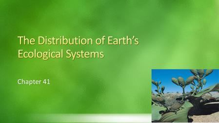 The Distribution of Earth's Ecological Systems