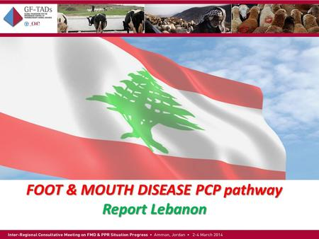 FOOT & MOUTH DISEASE PCP pathway Report Lebanon.  Official name: Republic of Lebanon  Capital: Beirut  Area: 10,452 sq km  Population: 3,874,050 (2006.