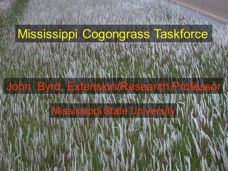Mississippi Cogongrass Taskforce John Byrd, Extension/Research Professor Mississippi State University.