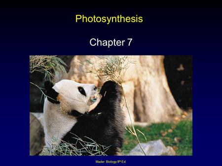 Photosynthesis Chapter 7 Mader: Biology 8th Ed..