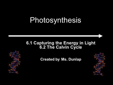 6.1 Capturing the Energy in Light 6.2 The Calvin Cycle Created by Ms. Dunlap Photosynthesis.
