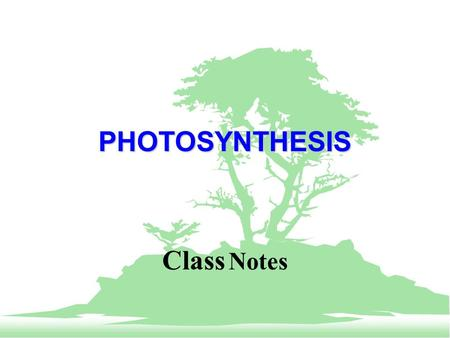 PHOTOSYNTHESIS Class Notes. PHOTOSYNTHESIS F Photosynthesis is ability of a plant to turn sunlight, air, and water into sugar (energy). F The overall.